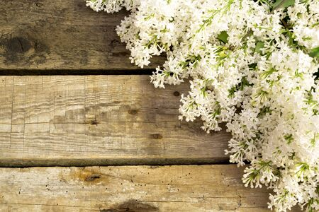 Foto de Lilac flowers on wooden background. Spring floral background - Imagen libre de derechos