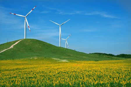 eolic energy field with windmills
