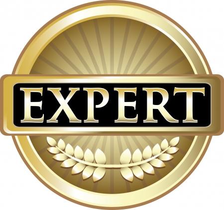 Illustration pour Expert Gold Award - image libre de droit