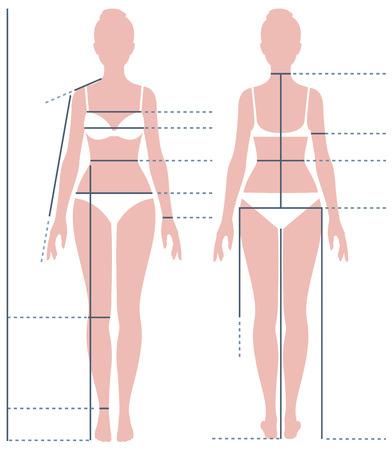 Female body in full length for measuring the size of the figure Stock vector illustration
