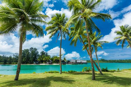 Photo for Tropical resort destination in Port Vila, Efate Island, Vanuatu, with beach and palm trees - Royalty Free Image