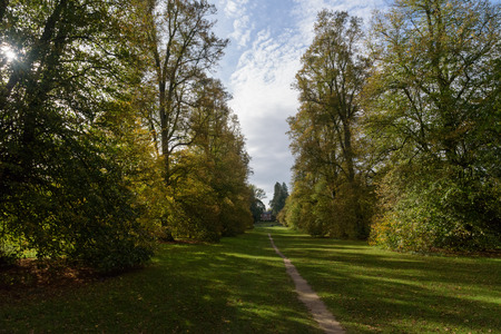 Lime Avenue path with house  in autumn at Nowton Park, Bury St Edmunds, Suffolk, UK