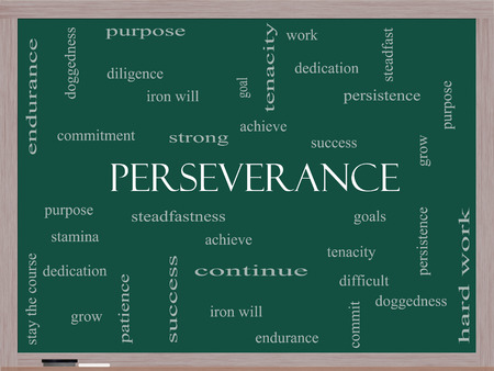 Perseverance Word Cloud Concept on a Blackboard with great terms such as endurance, doggedness, purpose and more.