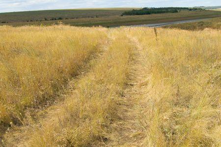 steppe way