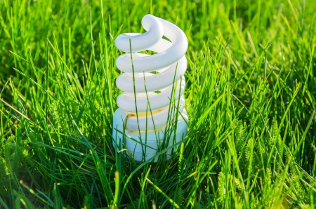 white energy saving bulb in green grass