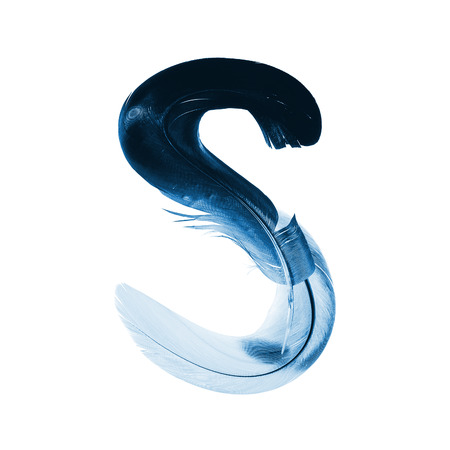 alphabet - letter S from bird feathers