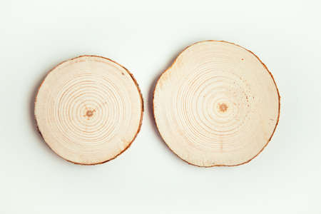 Photo for Two wood cuts, round shape on white background. Round wooden saw cuts. - Royalty Free Image