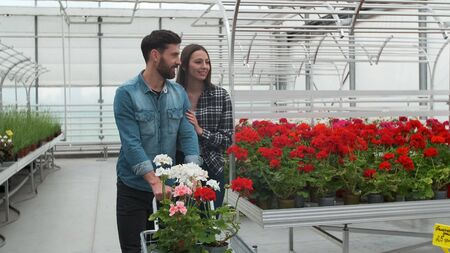 Photo for Нoung couple Buying Flowers in a Sunlit Garden Shop. 4K. Coupe shopping for decorative plants on a sunny floristic greenhouse market. Home and Garden concept. - Royalty Free Image