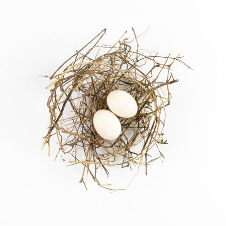 Photo pour Two eggs of dove birds in brown dry grass nest, Top view, isolated on white background. - image libre de droit