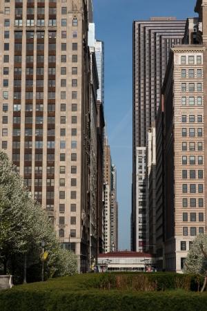 Skyscraper downtown in Chicago USA