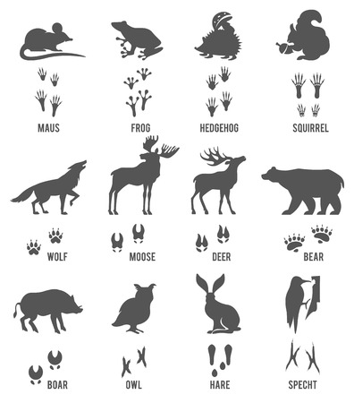 Set of Animal and Bird Trails with Name.Vector Set of Black Forest Animals and Birds Silhouettes