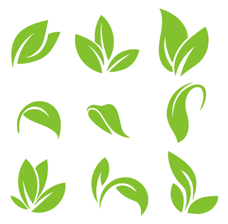 Illustration pour Leaves icon vector set isolated on white background. Various shapes of green leaves of trees and plants. Set of isolated green leaves icons on white background. - image libre de droit