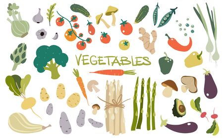 Hand drawn fresh delicious vegetables. Package of healthy and tasty vegan products, healthy vegetarian food.