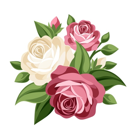 Pink and white vintage roses  Vector illustration