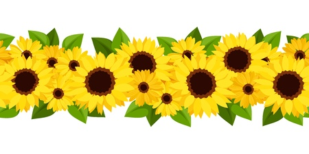 Horizontal seamless background with sunflowers and calendula  Vector illustration