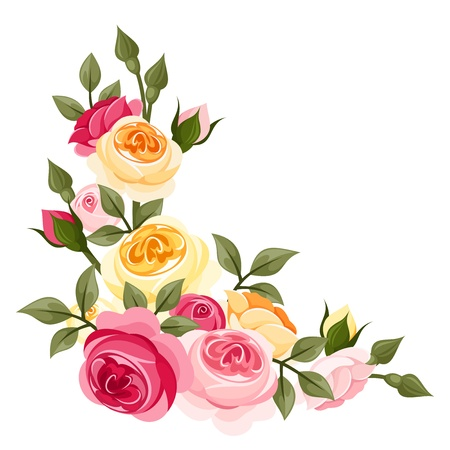 Pink and yellow vintage roses  Vector illustration