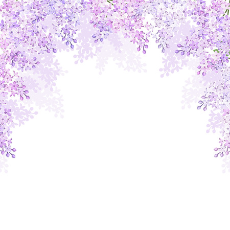 Background with lilac flowers  Vector illustration