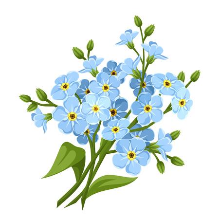 Illustration pour Blue forget-me-not flowers. Vector illustration. - image libre de droit