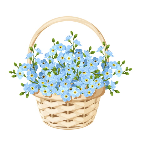 Illustration pour Vector beige wicker basket with blue forget-me-not flowers. - image libre de droit