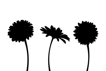 Illustration pour Vector set of three gerbera flowers with stems isolated on a white background. - image libre de droit