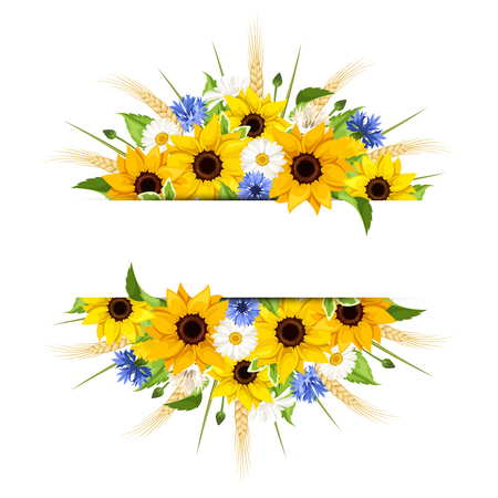 Illustration pour Vector background of sunflowers, daisies, cornflowers, ears of wheat and leaves isolated on a white background. - image libre de droit
