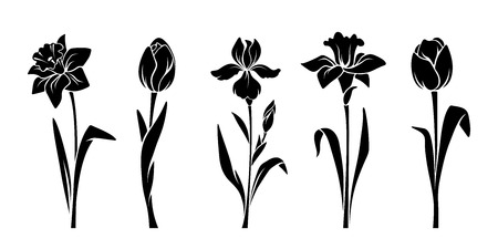Illustration pour Vector black silhouettes of spring flowers (tulips, narcissus and iris) isolated on a white background. - image libre de droit