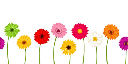 Ilustración de Vector horizontal seamless background with colorful gerbera flowers. - Imagen libre de derechos