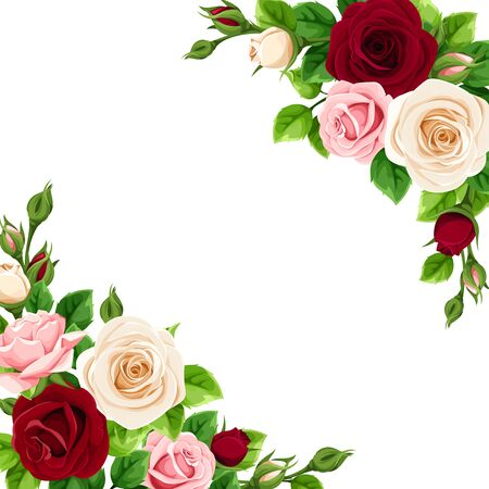 Illustration pour Vector greeting or invitation card with pink, burgundy and white roses. - image libre de droit