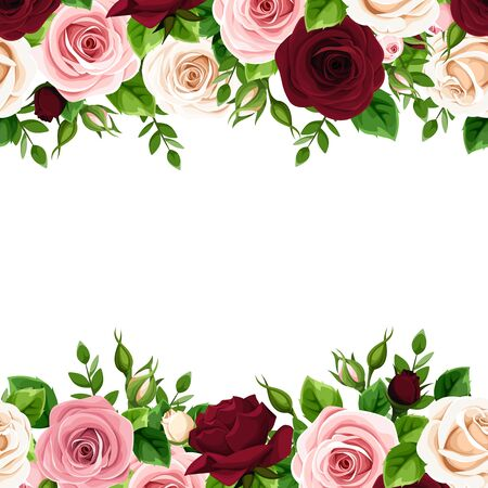 Illustration for Vector horizontal seamless frame with burgundy, pink and white roses on a white background. - Royalty Free Image
