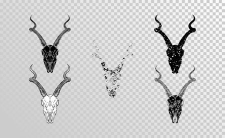 set of hand drawn skulls antelope with grunge elements in different versions on a transparent background. Monochrome. For you design, tattoo or magic craft.