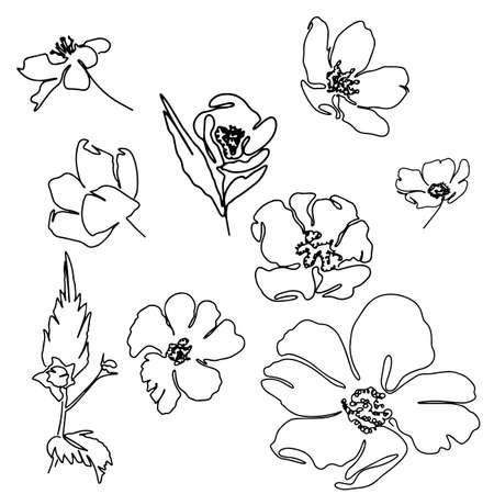 Illustration pour Beautiful hand drawn Line art monoline flowers - image libre de droit