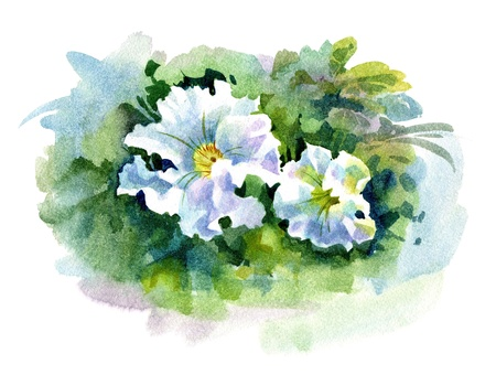 Watercolor Flower Collection: Petunia