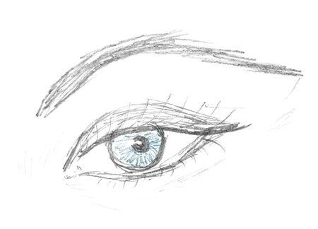 Foto de human eye and eyebrow sketch, pencil drawing - Imagen libre de derechos