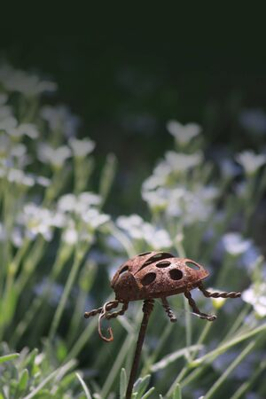 A garden ornament in the form of a rusty ladybird made of steel, set against a floral garden background  Copy space available to top of image
