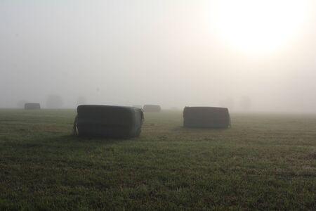 Hay bales in the fog