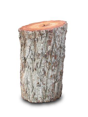 Foto de Tree stump on white - Imagen libre de derechos