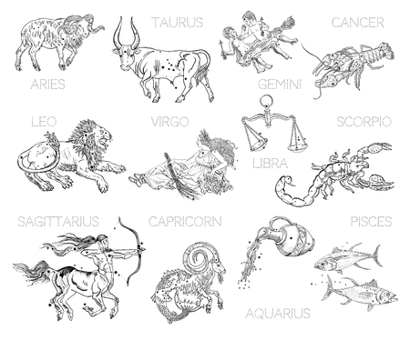 Ilustración de Constellations, zodiac signs, horoscope. Aries, Taurus, Gemini, Cancer, Leo, Virgo, Libra, Scorpio, Sagittarius, Capricorn, Aquarius, Pisces. Vintage engraving tattoo style drawings isolated on white. - Imagen libre de derechos
