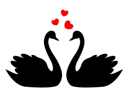 Swan Couple In Love Illustration Clipart Isolated On White