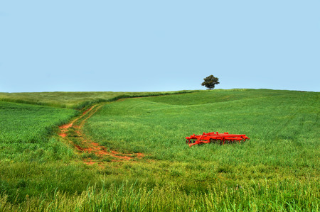 Large green field stretches to the horizon.  An orange plow sits in deep green grass.  Lone tree sits at top of winding dirt road that travels to the hilltop.