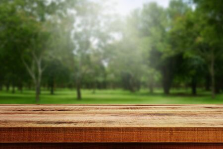 Foto de Wooden table and blurred forest background. - Imagen libre de derechos
