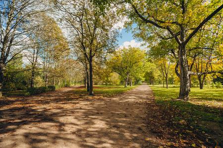 Promenade in a beautiful city park