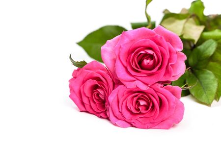 Photo for Pink rose bouquet isolated on white background - Royalty Free Image