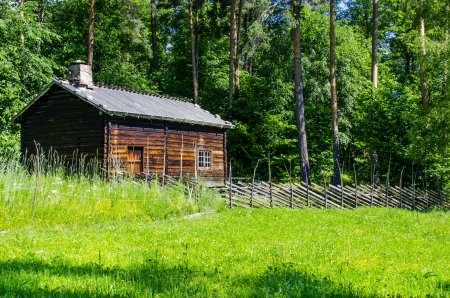 Log cabin surrounded by the forest at Norway