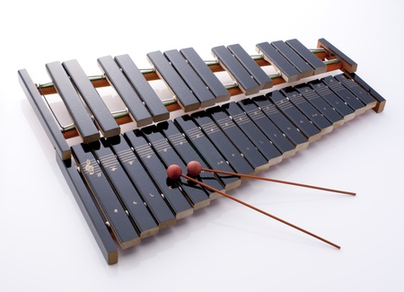 wooden percussion instrument called xylophone