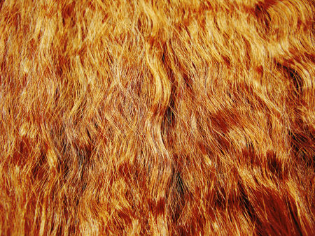 curly highlight hair texture abstract fashion style background