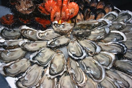 Seafood (oysters, shrimps, sea-urchins, mussels) are decoratively put on ice in a big plate.