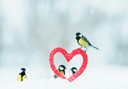 Photo pour beautiful festive Valentine with many birds chickadees fly from the symbolic frame of love in the form of red heart - image libre de droit