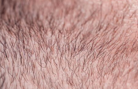 Photo pour background with a man's chin skin texture covered with hair and beard bristles - image libre de droit