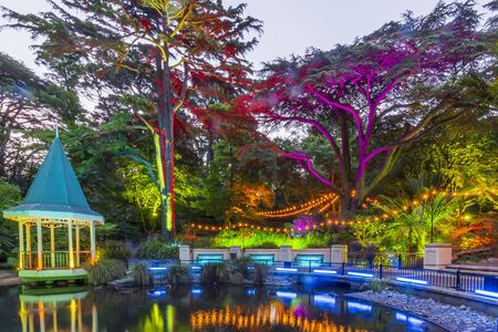 The Duck Pond at Gardens Magic - Dazzling displays of light amongst the trees of Wellington Botanic Garden, New Zealand.