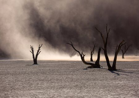 Photo for Silhouettes of dry hundred years old trees in the desert among red sand dunes. Unusual surreal alien landscape with dead skeletons trees. Deadvlei, Namib-Naukluft National Park, Namibia. Namib desert. - Royalty Free Image